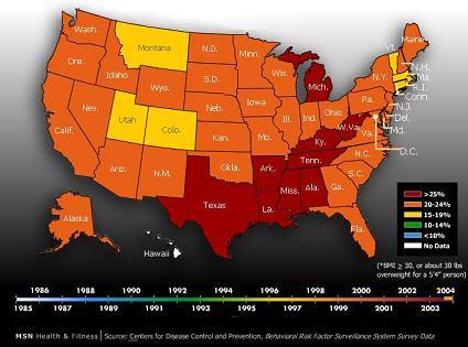 obesity-epidemic2004-msn-small